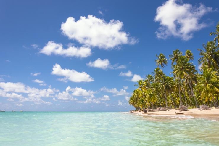 praias em Maragogi