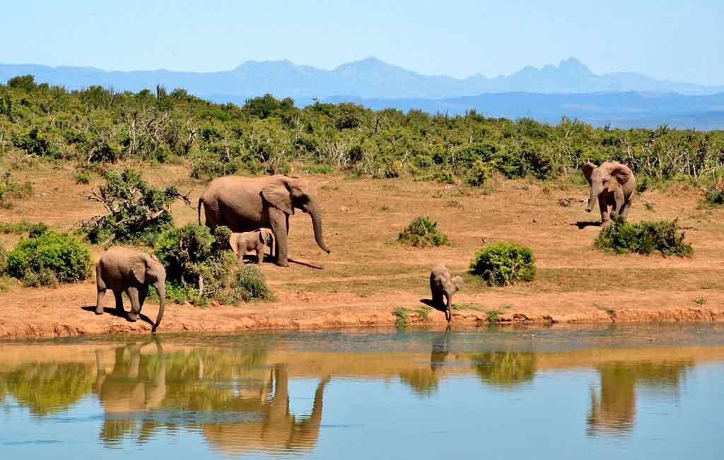 Lugares imperdíveis na África do Sul Quando conhecer