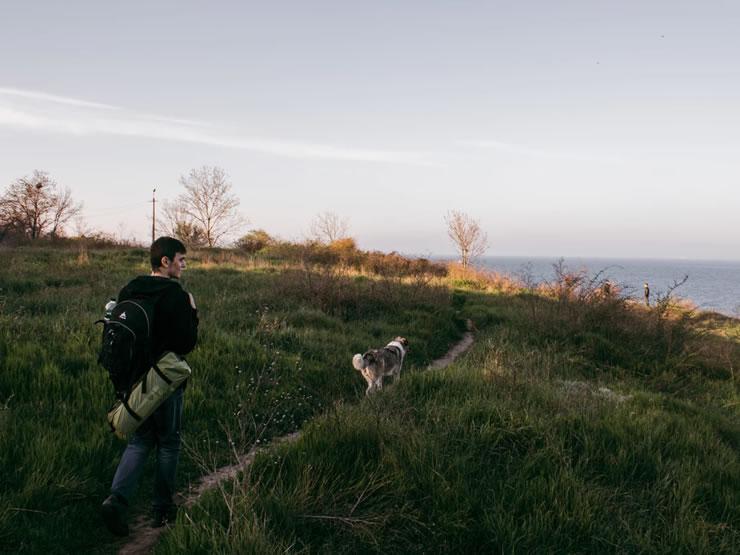 Viajar de avião com cachorro