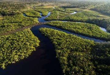 Viagem para Amazônia: dicas, passeios e principais atrativos turísticos