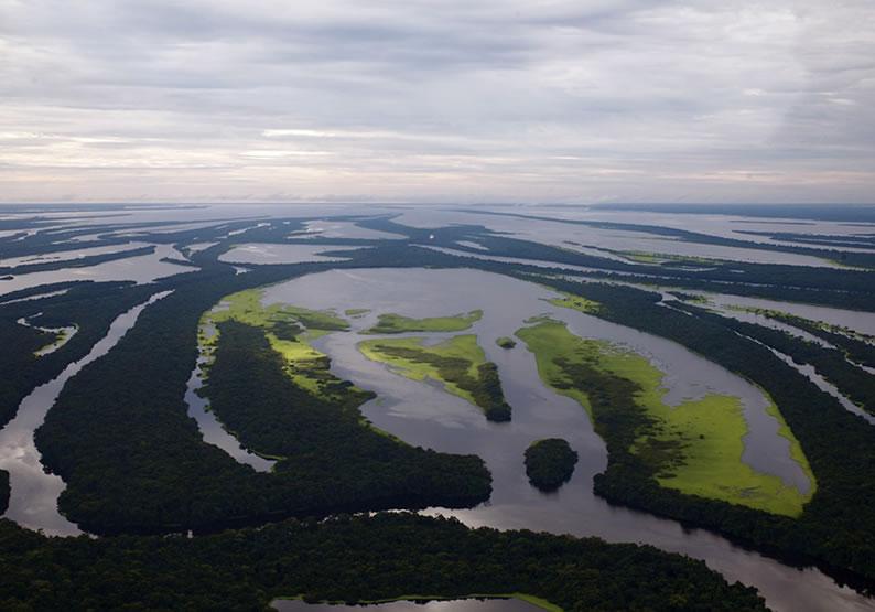 dicas Viagem para Amazônia