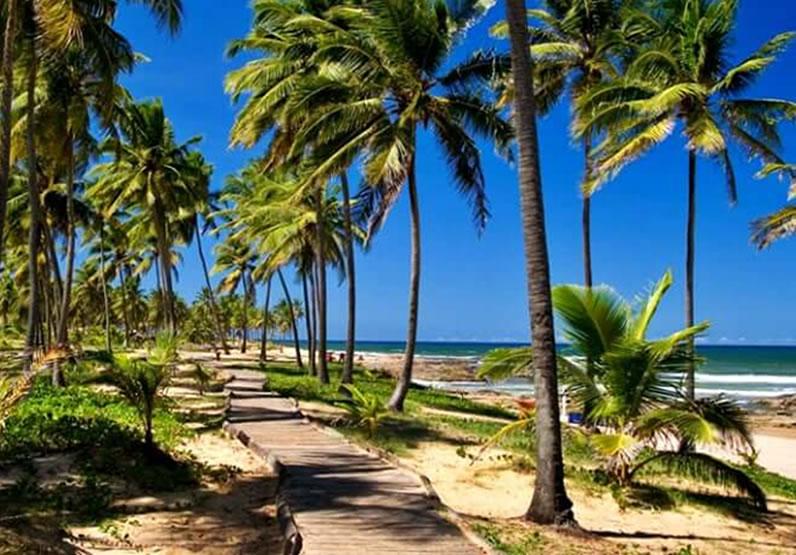 praias em salvador pontos turísticos