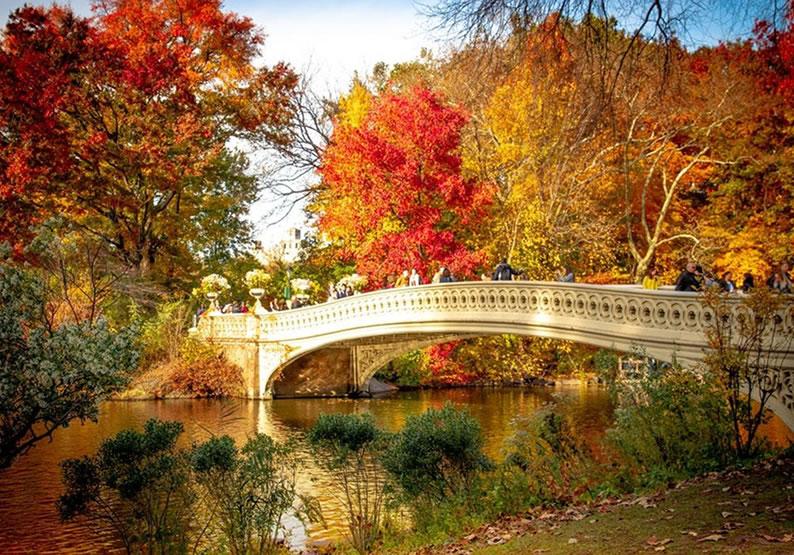 O que fazer em Nova York Central Park