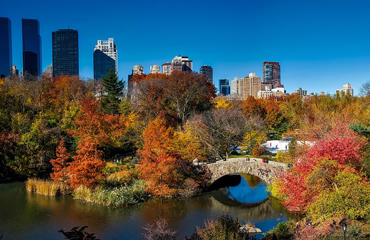 pontos turisticos em nova york Central Park