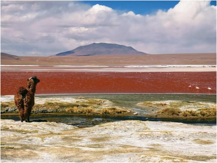 Dicas para aproveitar a viagem à Bolívia