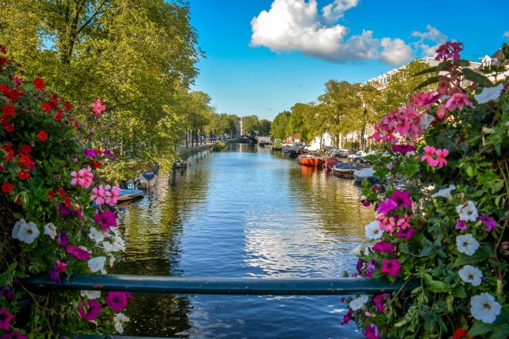 Amsterdam roteiro