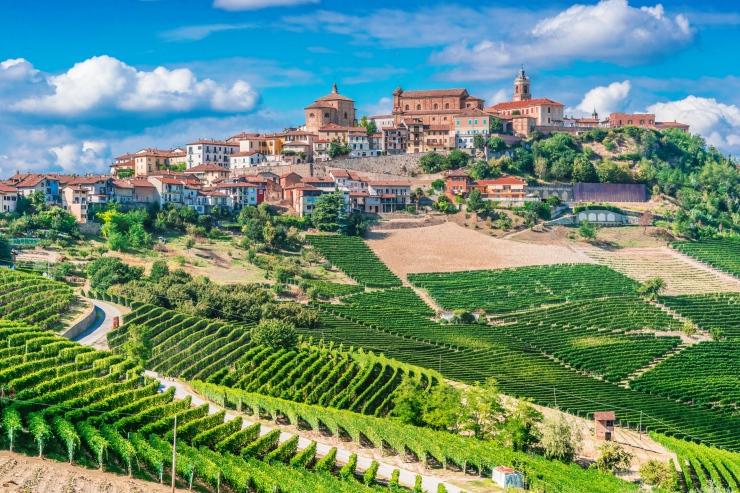 turismo do vinho