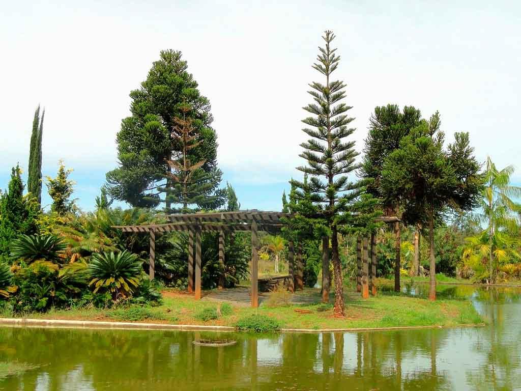 Jardim botânico em Brasília