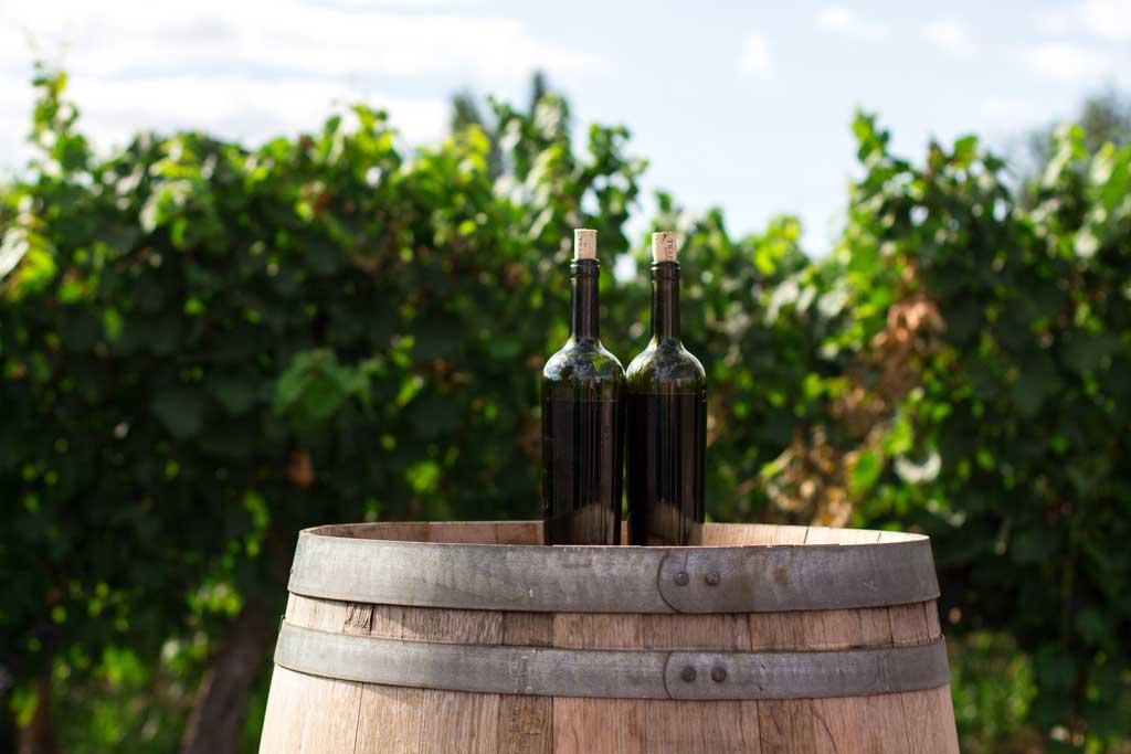 Roteiro Argentina: Vinhos