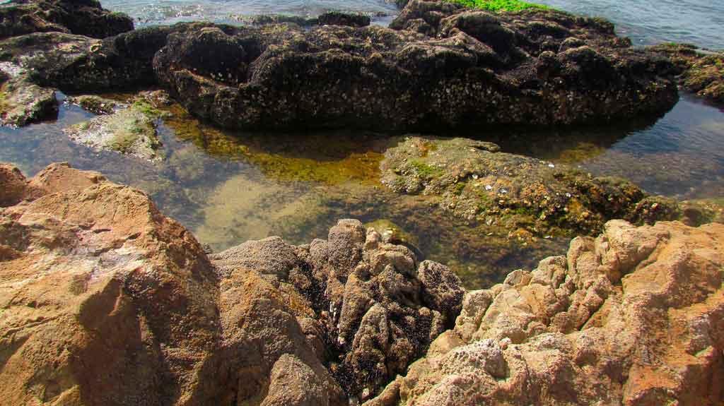 Praia em Itajaí