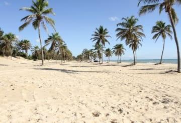 Pontos turísticos de Fortaleza: dicas, onde ir e melhores praias