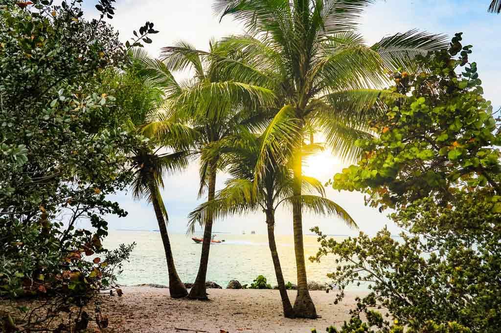 O que fazer em Key West: Melhor época