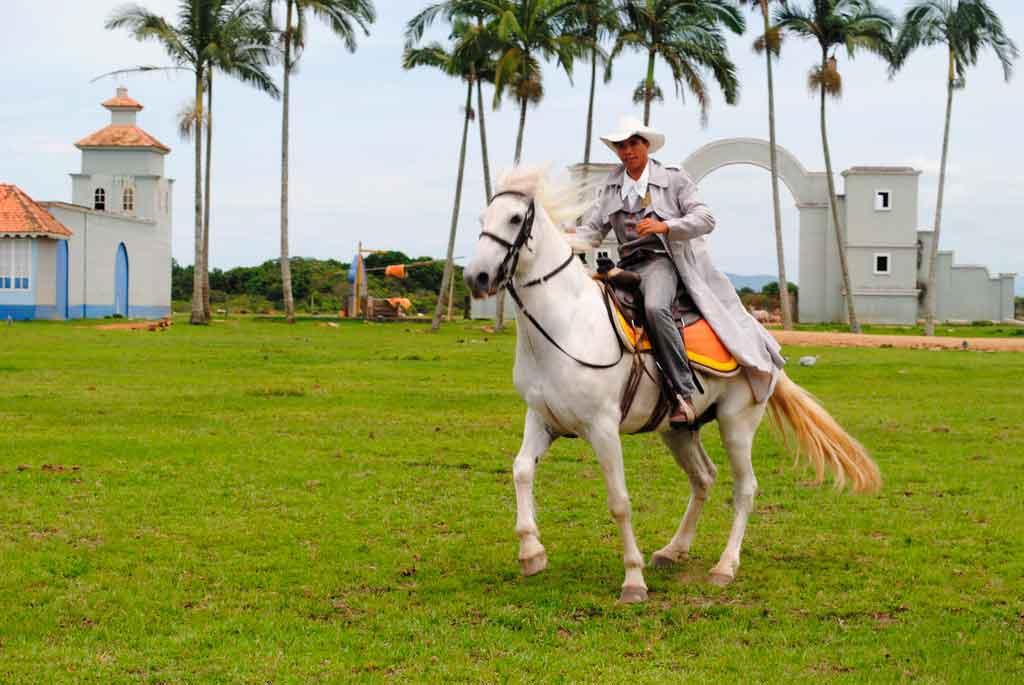 Mundo dos Cavalos