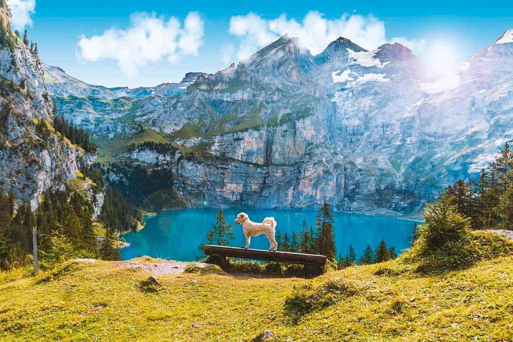 Alpes Suiços Kandersteg