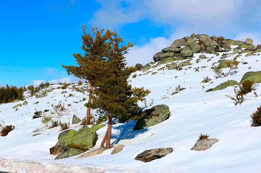 Neve em Portugal: Parque Nacional Serra da Estrela
