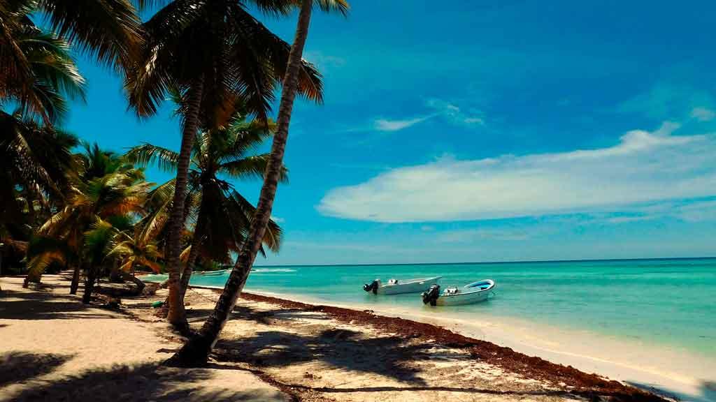 O que fazer em Punta Cana: Ilha Saona