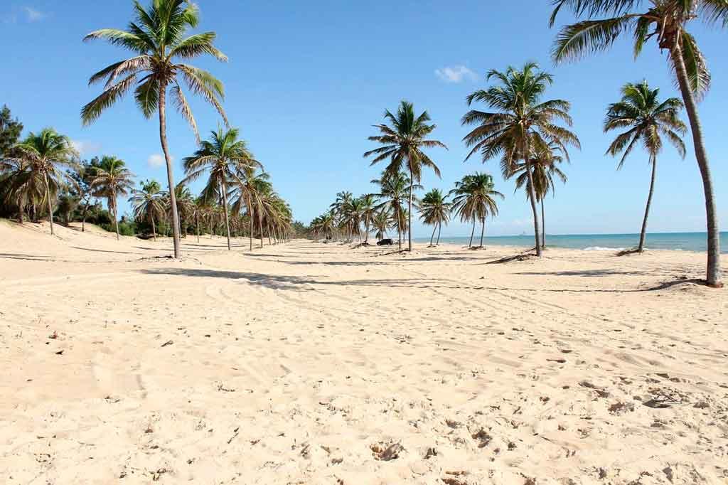 Melhor época para ir às Praias do Ceará