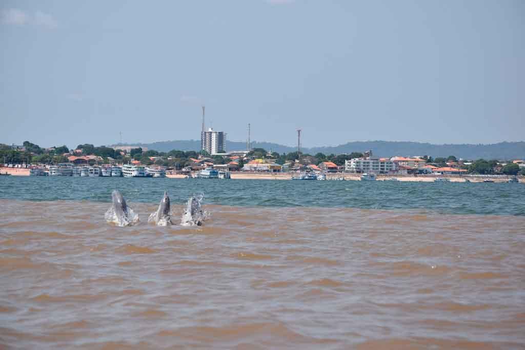 Turismo na Amazônia: Encontro das Águas