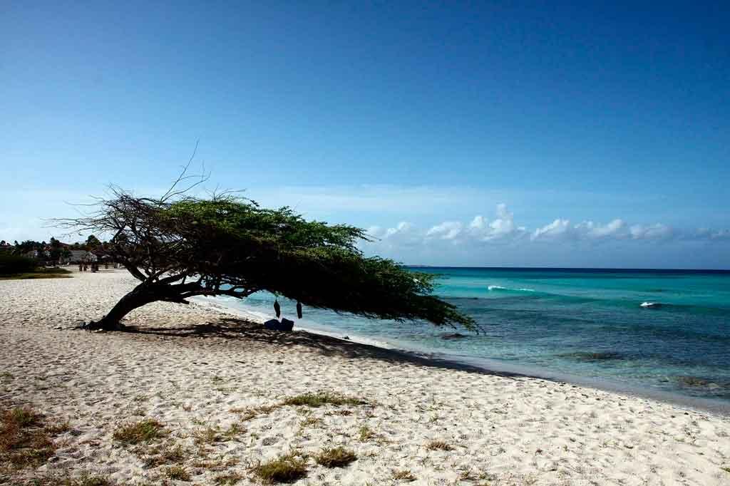 Ilhas do Caribe Aruba
