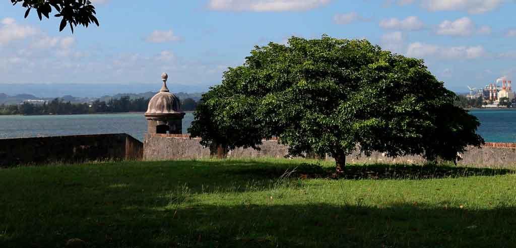 Porto Rico onde fica
