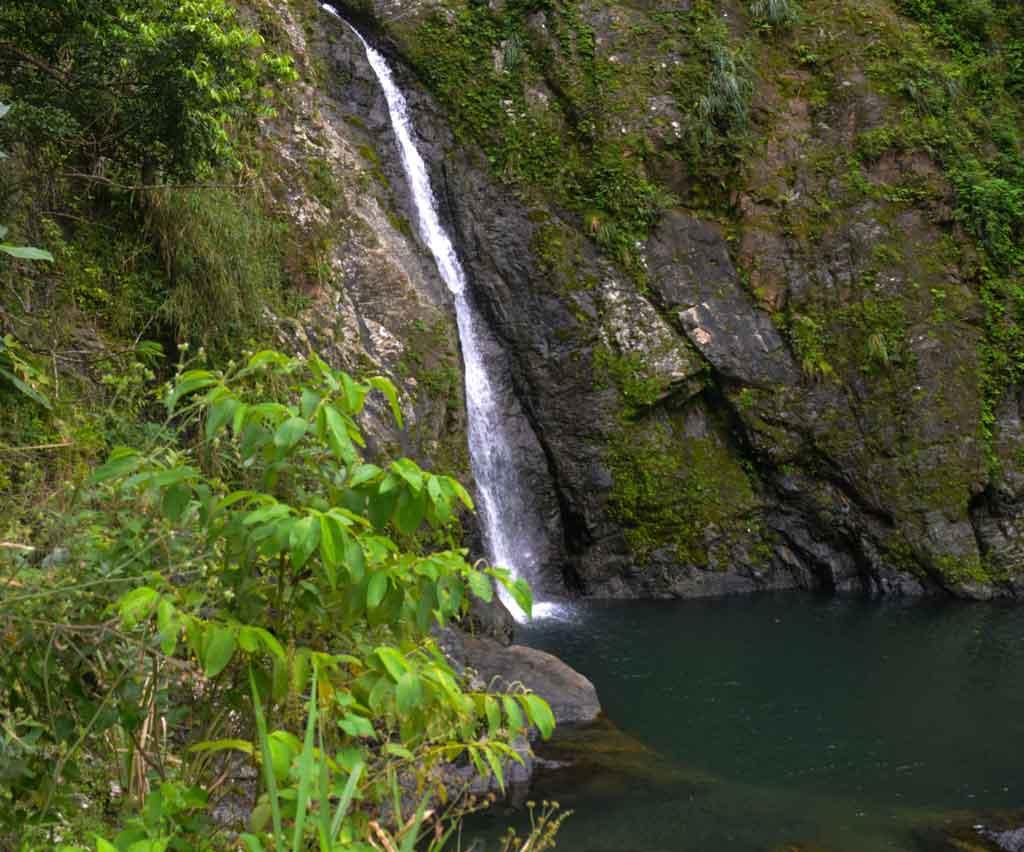 Porto Rico Toro verde adventure park