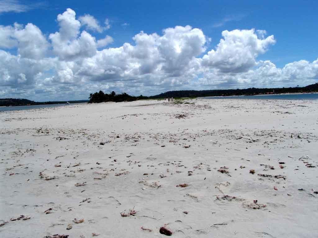 Praias de Pernambuco coroa do Avião