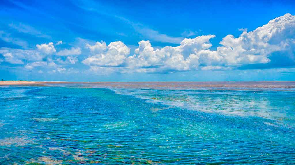 Praias de Pernambuco praia do forte orange
