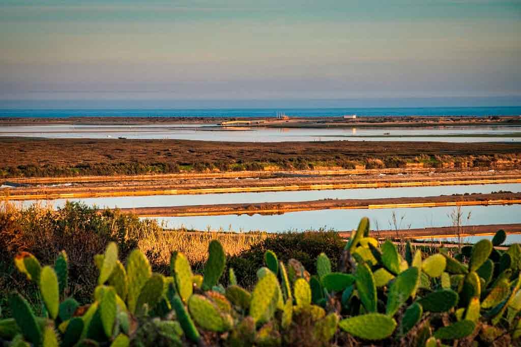 Algarve portugal lagoa