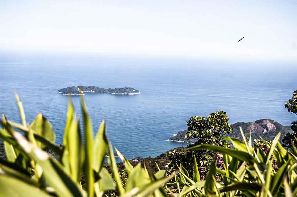 O que fazer em Ilha grande pico do papagaio