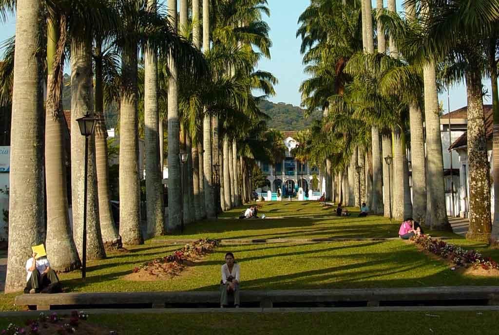 O que fazer em Joinville rua das palmeiras