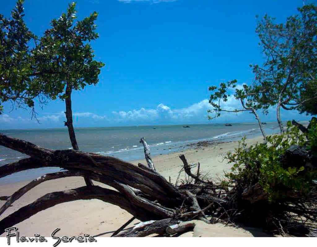 litoral sul da bahia praia do mutá