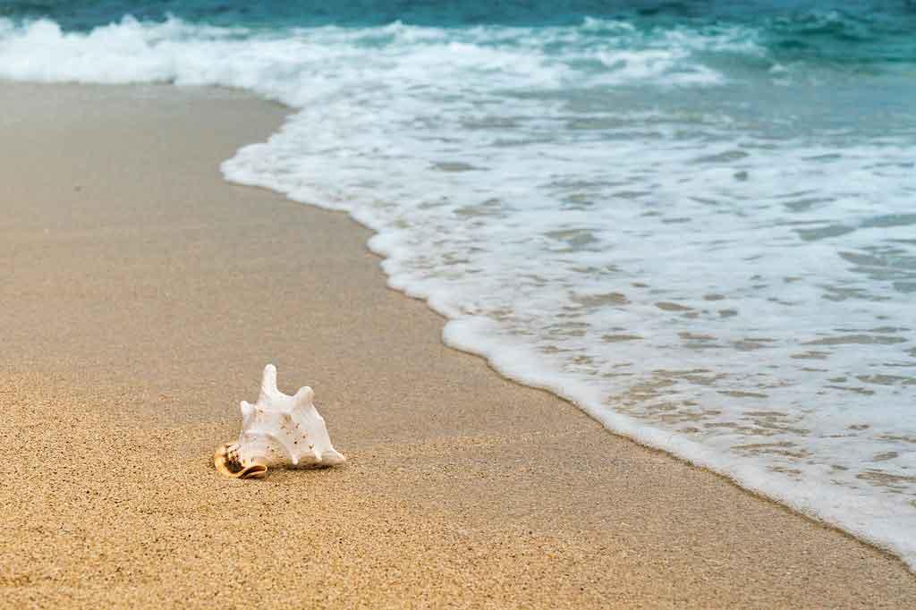 Praias de nudismo no Brasil existem