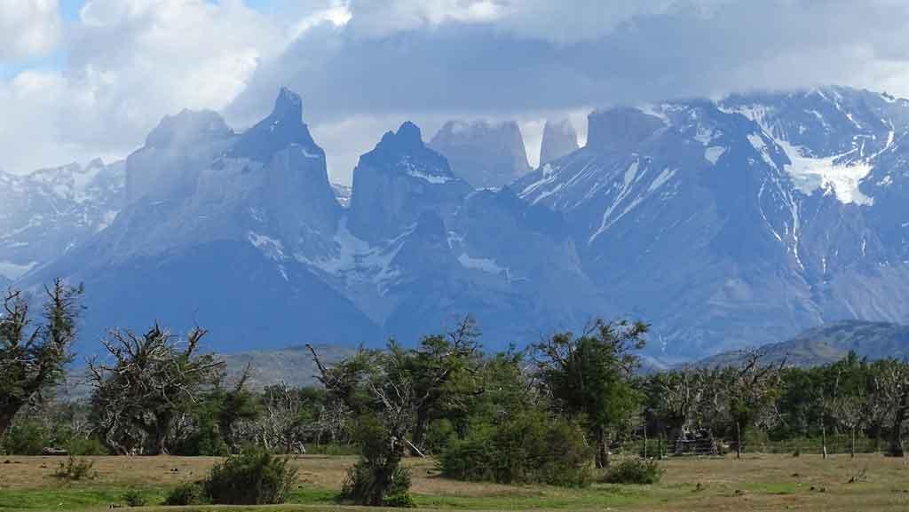 Punta Arena chile reserva nacional magallanes