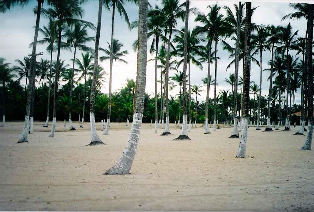 Costa do Cacau Canavieiras
