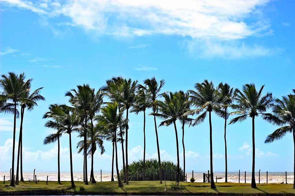 Costa do Cacau ilheus