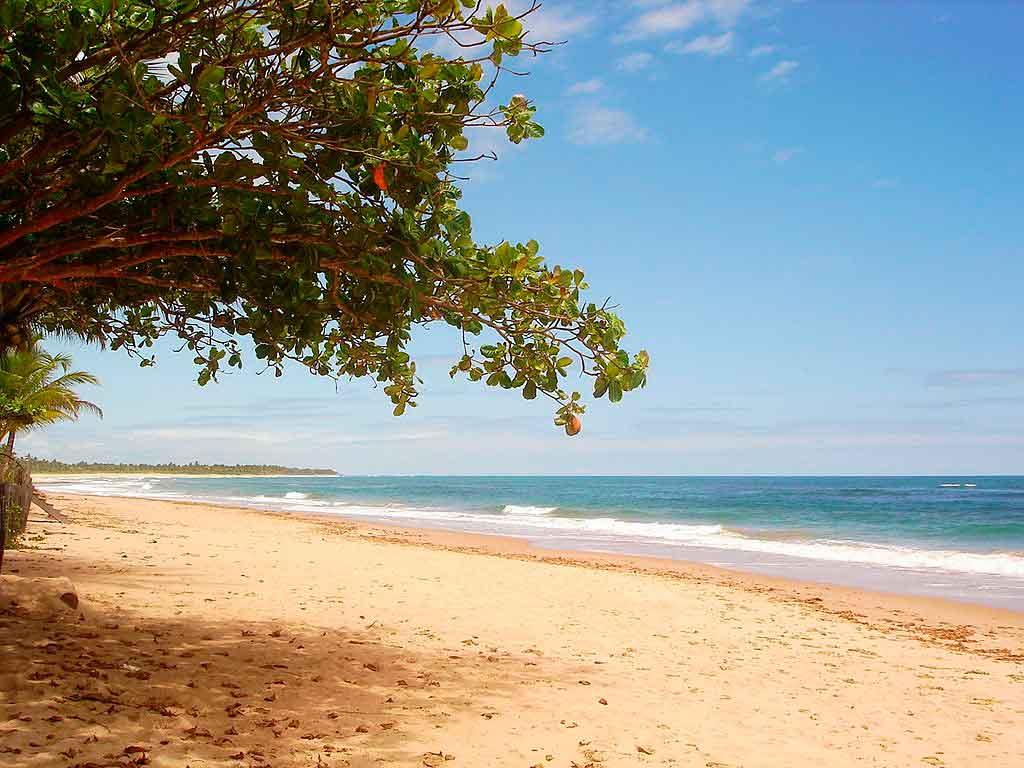 Costa do Dende onde fica