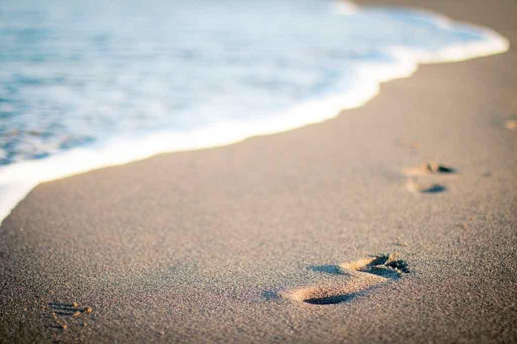 Ilha do campeche praia da enseada