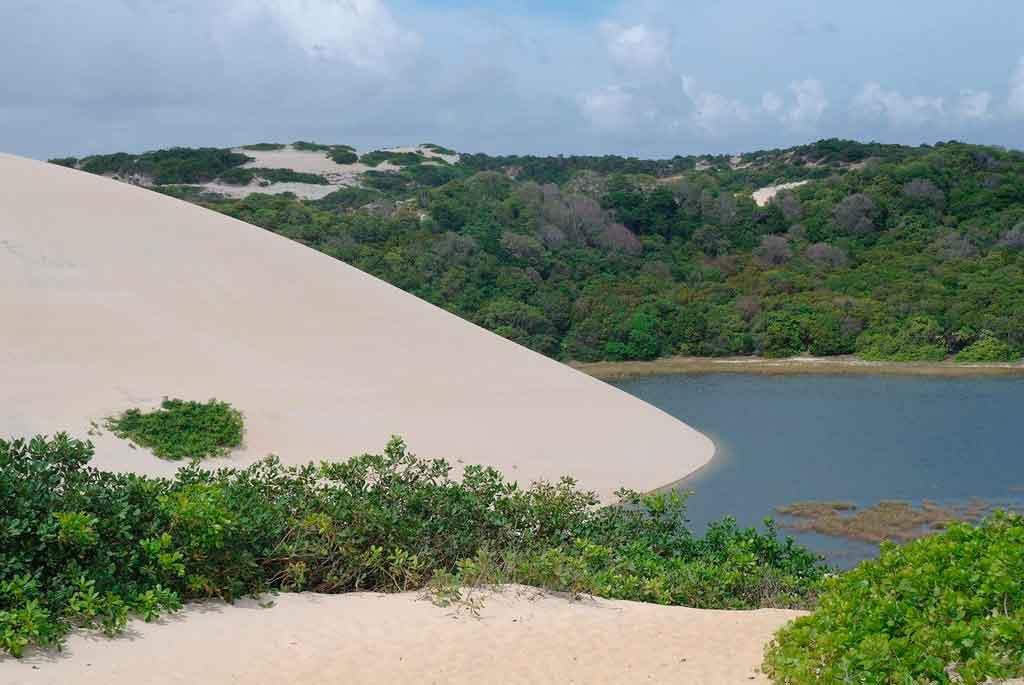 Praia de Genipabu dunas