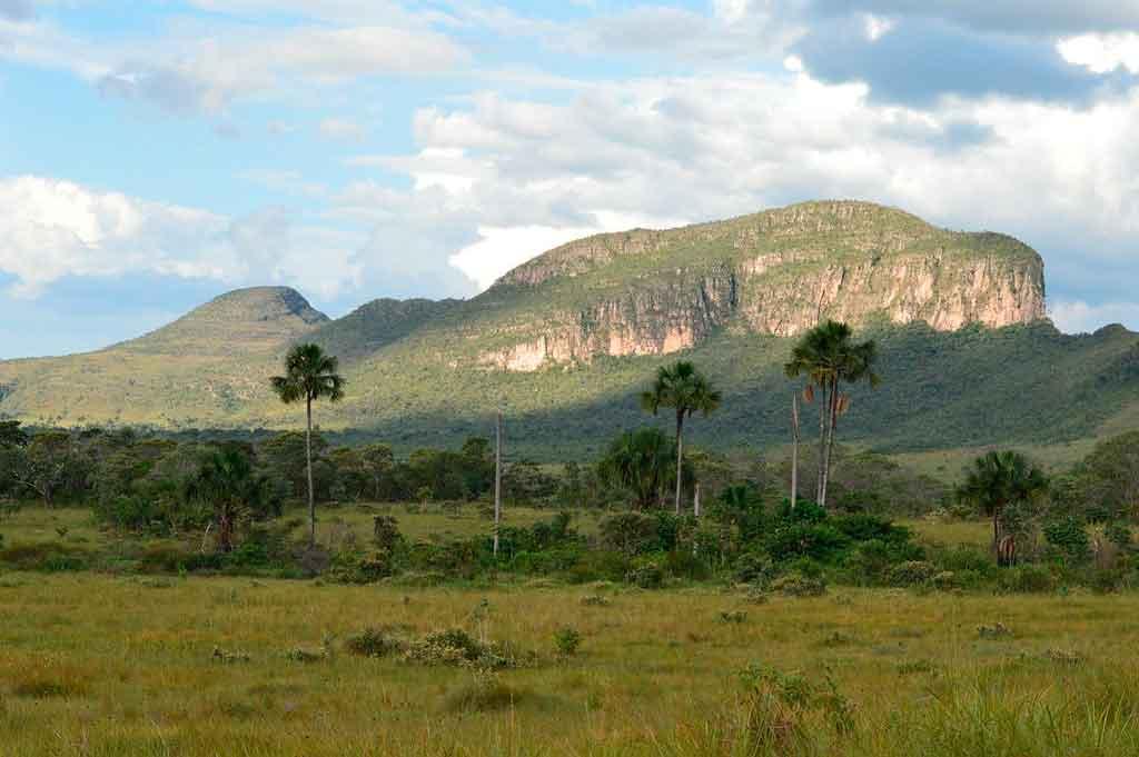 Parques Nacionais do Brasil chapada dos veadeiros