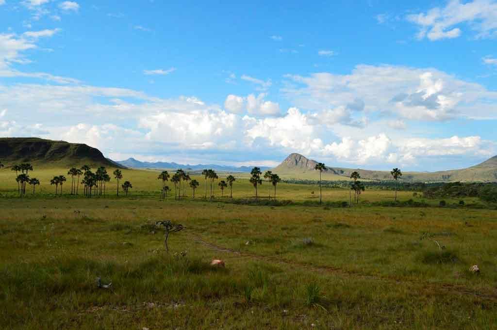 Parques Nacionais do Brasil Quantos tem