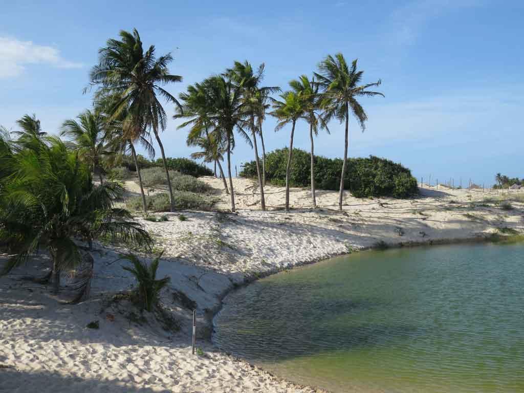 Praia de Morro Branco Canoa Quebrada