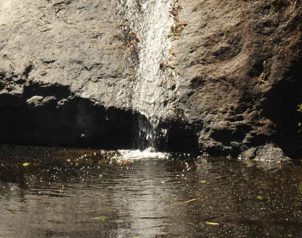 O que fazer em Cunha cachoeiras