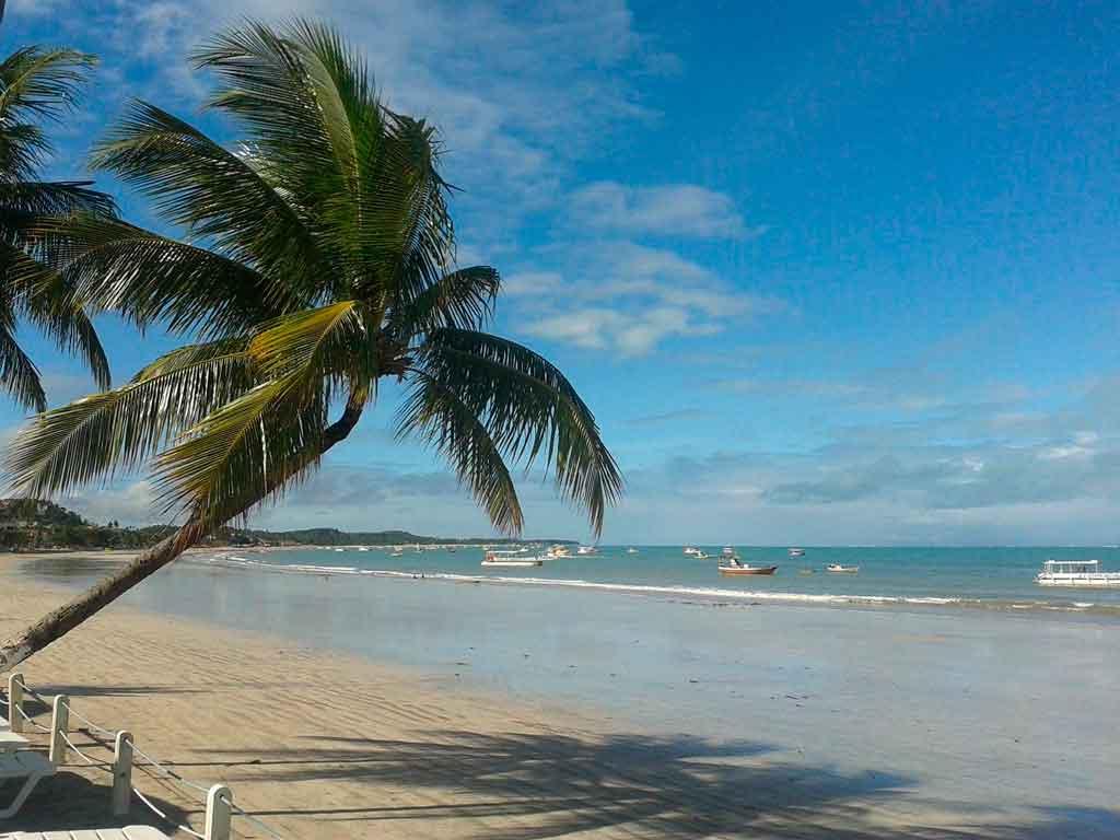 Pontos turísticos de Alagoas Gales de Maragogi