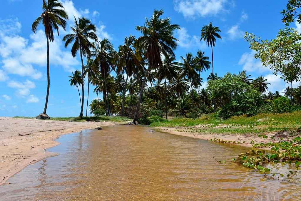 Pontos turísticos de Alagoas Quais são