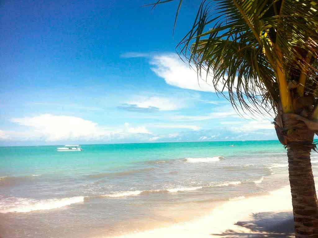Praias de Alagoas praia do Gunga
