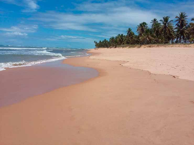 Qual a melhor praia da Praia do Forte?
