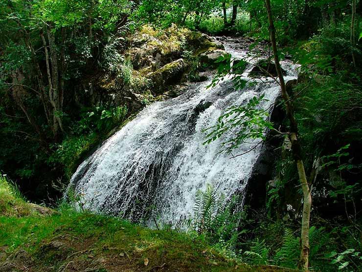 Cachoeiras em São Francisco Xavier