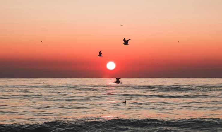 Onde ver o por do sol em Maringá
