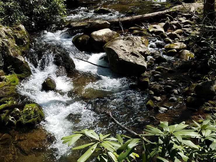 Cachoeira do Engordador, Parque Estadual Cantareira