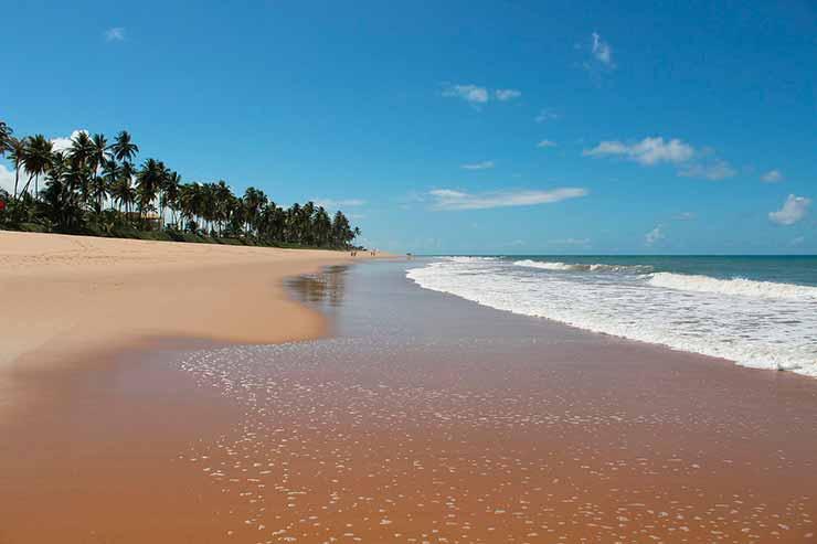 O que conhecer nas proximidades de Mangue Seco, Bahia?